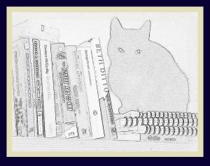 isis pencil books